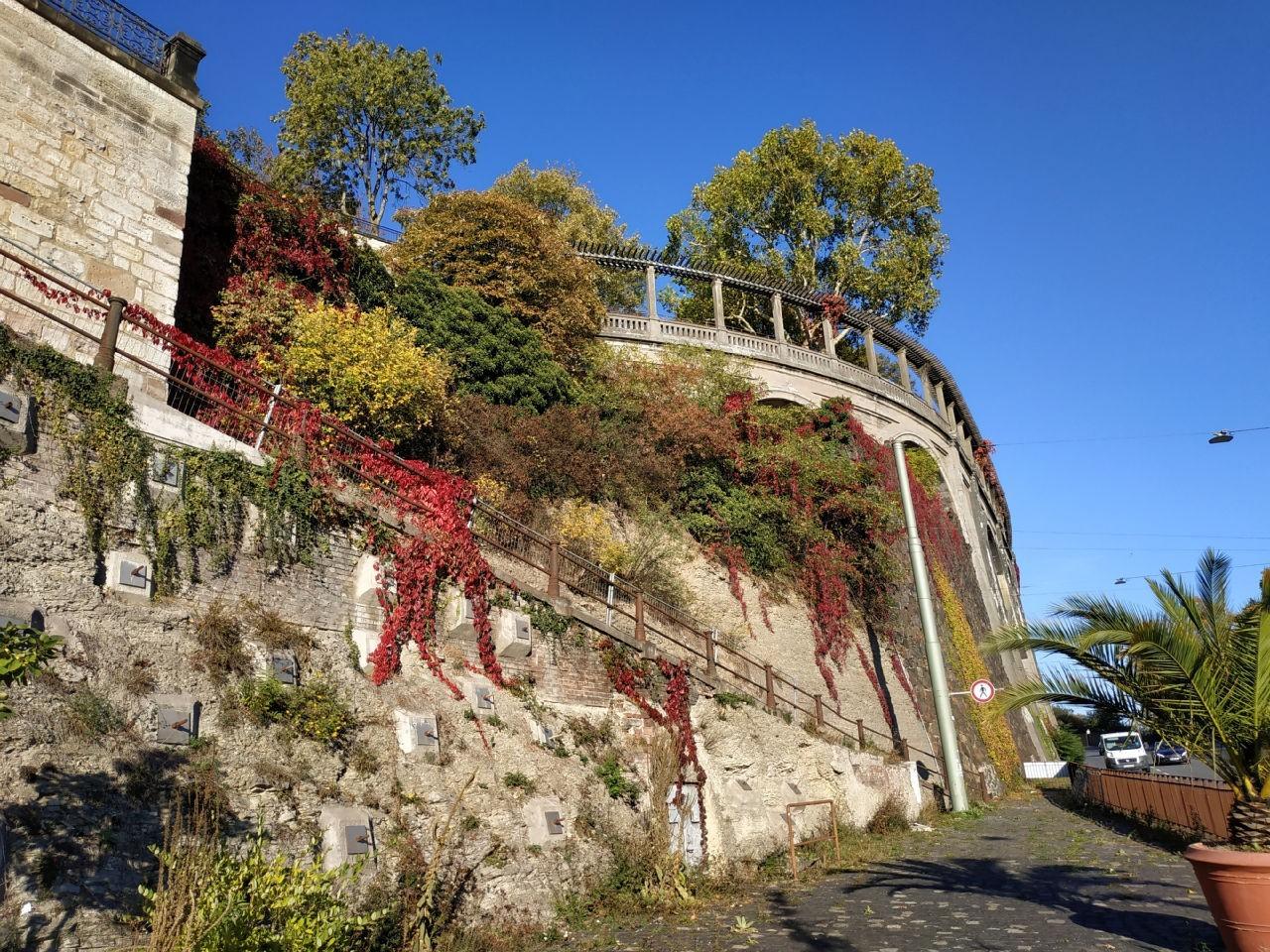 Stützmauern des Weinberges